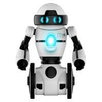 Toy Robot Manufacturers