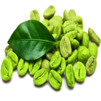 Instant Green Coffee Manufacturers