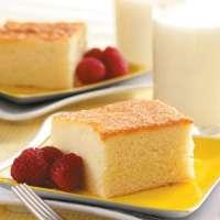 Milk Cake Manufacturers