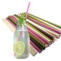 Compostable Plantbased Straws